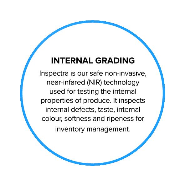 Inspectra-Technology-back.png