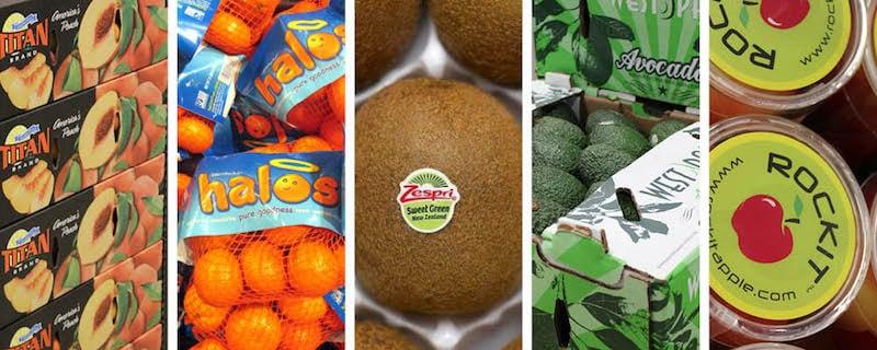 Consumer trends create huge opportunity for branded fresh produce