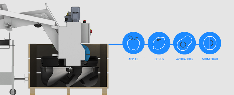 Fruit Sorting Technology: the multi-tool of the packhouse