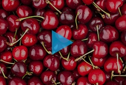 Video blue button - cherry