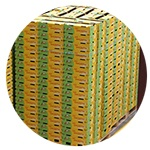 Zespri-boxes-img